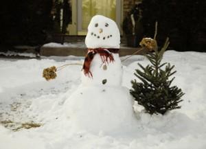 snowman-1139260_960_720