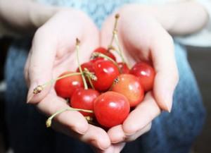and-cherries-1532124_960_720